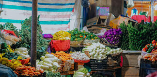 Przy produkcji warzyw niezbędne są dobrej jakości skrzynki na warzywa